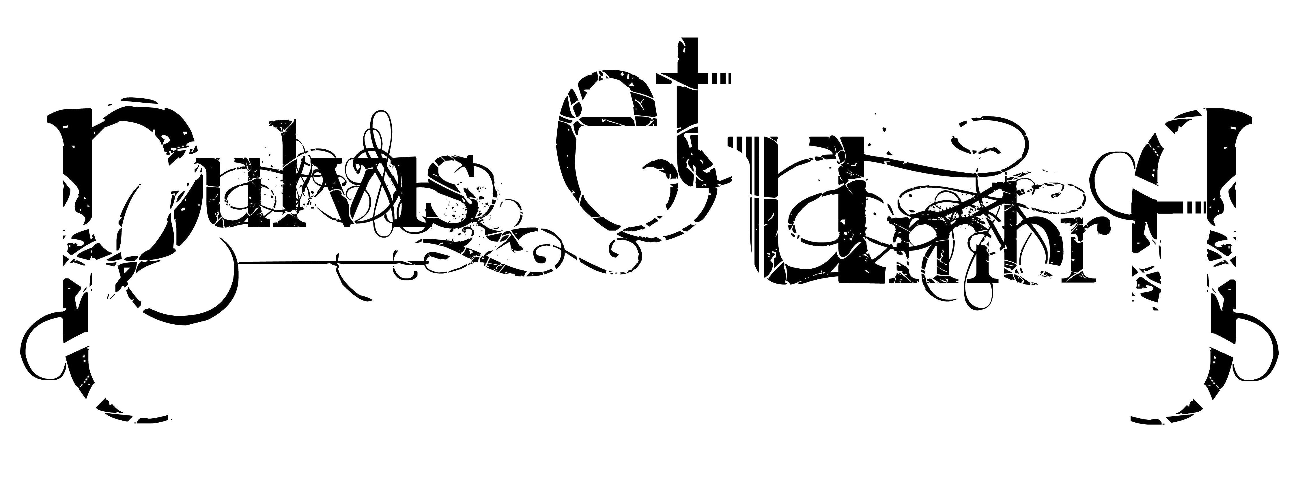 pulvis et umbra logo
